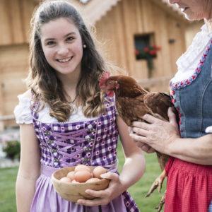 Hühner mit frischen Eiern