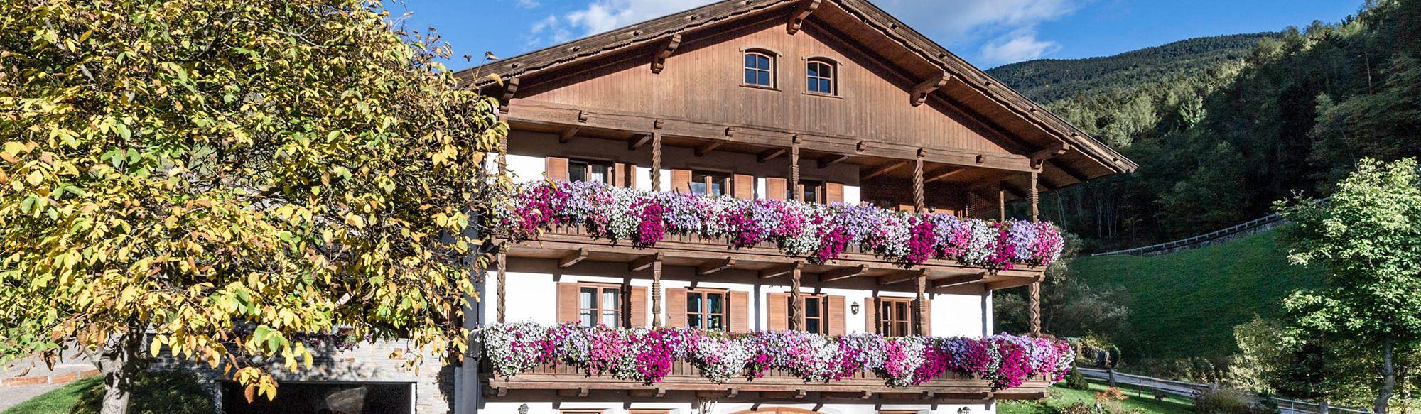 Niederthalerhof - unser Bauernhaus