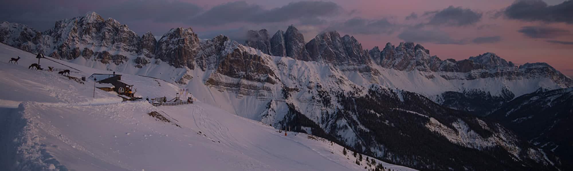 Rossalm im Winter